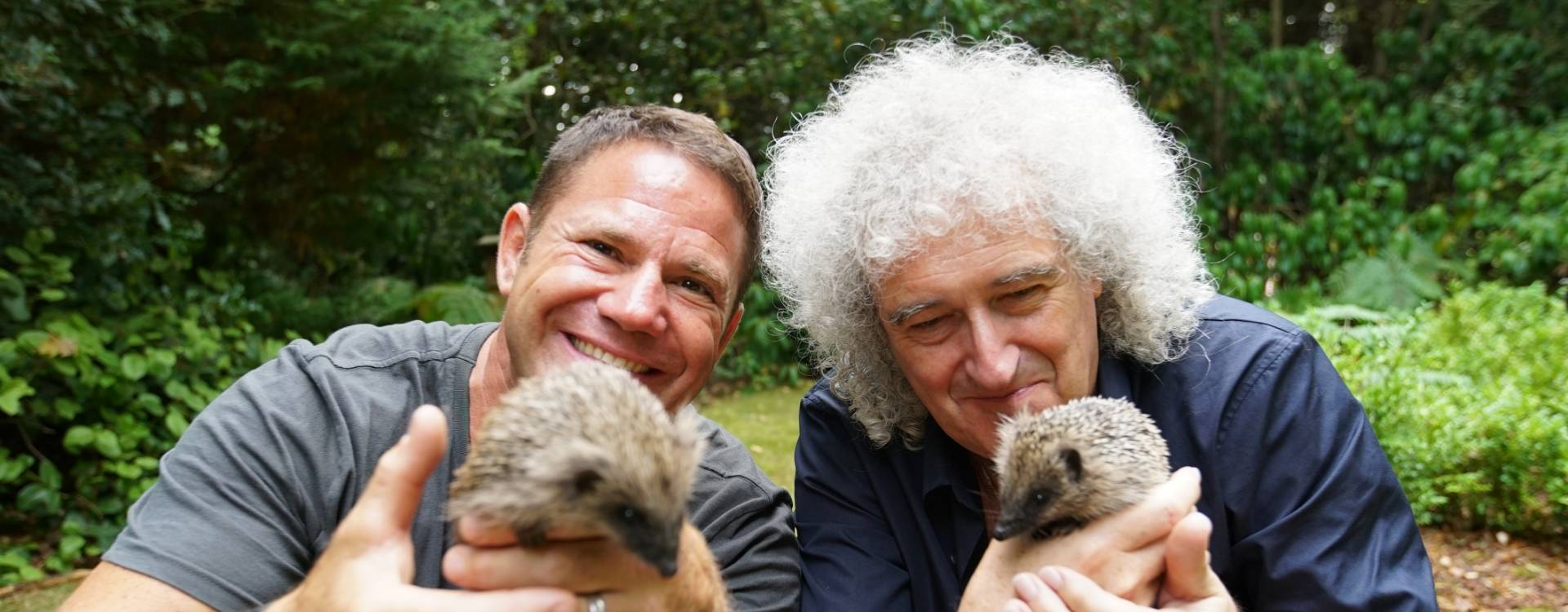 The Hedgehogs: The Series-banner